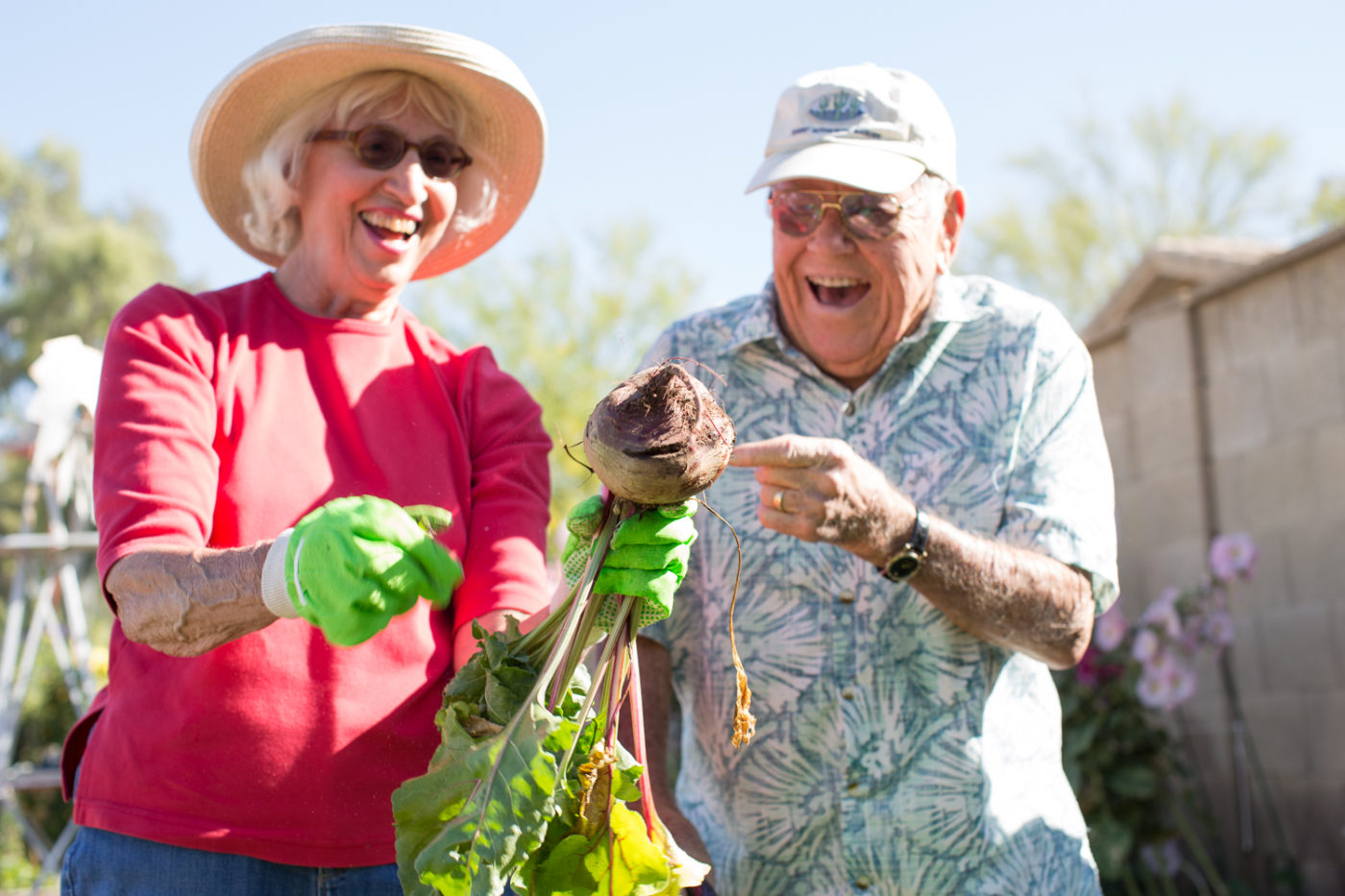 myths about senior living